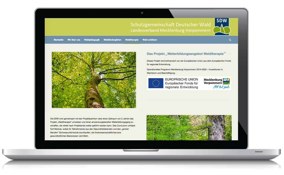 Webdesign Webseite SDW MV